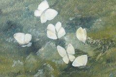 07-10-vita-fjarilar-olja-41x35-f6-duk