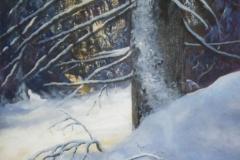 1_99-19-vintergran-65x54-akryl-duk