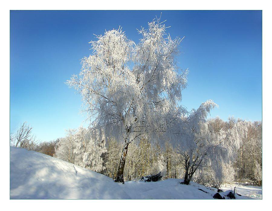 VinterVy1-06