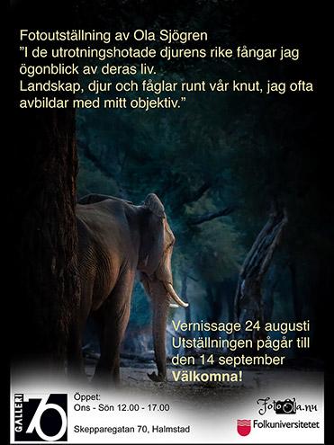 Ola Sjögren